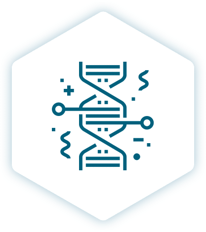 Webdesign, Branding, WordPress en WooCommerce lab